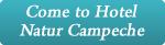 Conheça o Hotel Natur Campeche